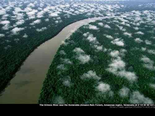 The Orinoco River near the Esmeralda (Amazon Rain Forest), Amazonas region, Venezuela