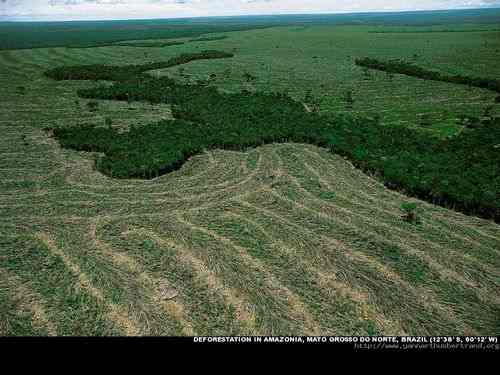 Deforestation in Amazonia, Mato Orosso do Norte, Brazil