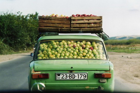lots of apples in car