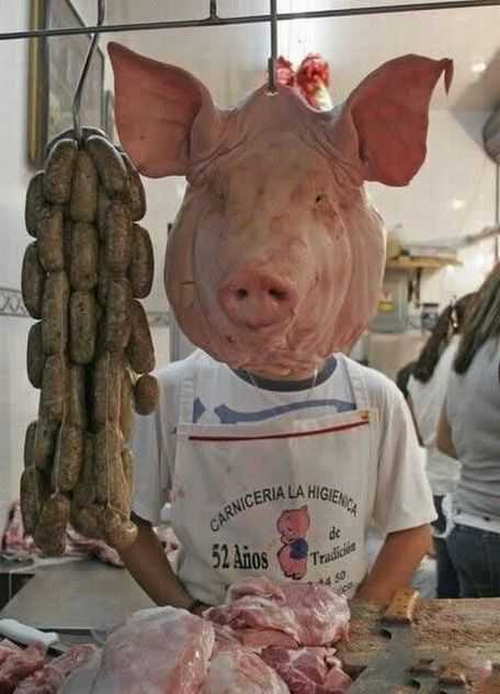 butcher pig man