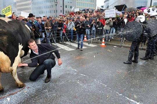 funny riot police milk