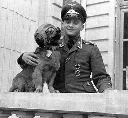 Gefangenenlager : Franzsisch Deutsch PONS